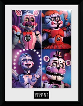 Pfc2451-five-nights-at-freddy's-sister-location-quad