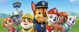 Mg2212-paw-patrol-group