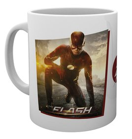 Mg2202-the-flash-solo-mug