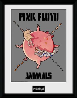 Pfc2585-pink-floyd-animals