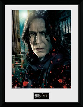 Pfc2551-harry-potter-snape