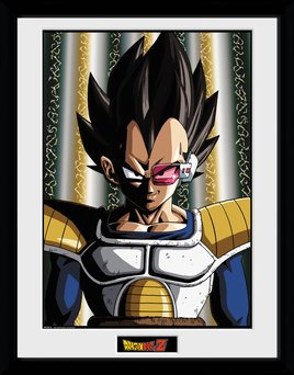 Pfc2616-dragon-ball-z-vegeta