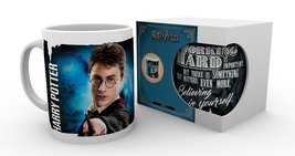 Mg1929-harry-potter-dynamic-harry-product