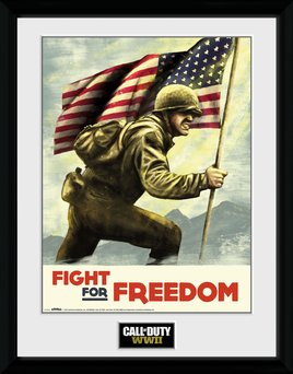 Pfc2632-call-of-duty-wwii-fight-for-freedom