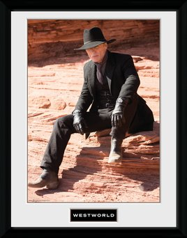 Pfc2946-westworld-man-in-black-sit