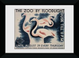 Pfp140-transport-for-london-the-zoo-by-floodlight