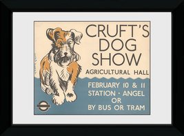 Pfp127-transport-for-london-crufts