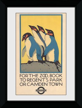 Pfp103-transport-for-london-zoo