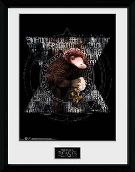 Pfc3046-fantastic-beasts-niffler-circle