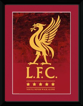 Pfc3105-liverpool-crest-and-stars-17-18