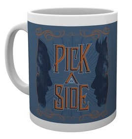 Mg3207-fantastic-beasts-2-pick-a-side-mug