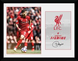 Pfc3149-liverpool-firmino-18-19
