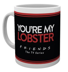 Mg3146-friends-you're-my-lobster-mug