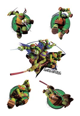 Teenage Mutant Ninja Turtles Shellheads