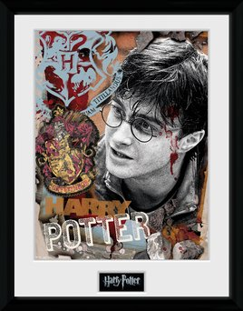 Harry Potter - Harry