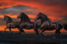Bob Langrish - Fantasy Horses