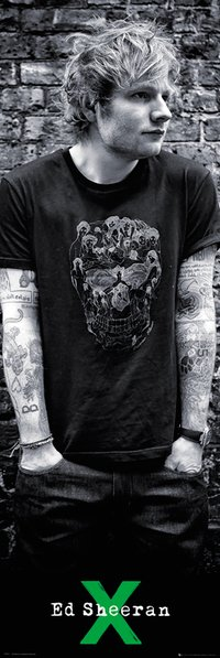 DP0527 Ed Sheeran Skull