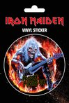 IRON MAIDEN fear llive flames