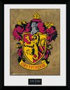 PFC2225-HARRY-POTTER-gryffindor.jpg