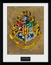 PFC2229-HARRY-POTTER-hogwarts.jpg