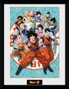 PFC3537-DRAGONBALL-SUPER-universe-group.jpg