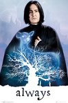 FP4395-HARRY-POTTER-snape-always.jpg