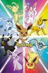 FP4426-POKEMON-eevee-evolution.jpg
