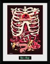 PFC2574-RICK-AND-MORTY-anatomy-park.jpg