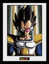 PFC2616-DRAGON-BALL-Z-vegeta.jpg