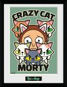 PFC2697-RICK-AND-MORTY-crazy-cat-morty.jpg
