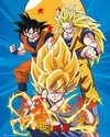 MP2066-DRAGON-BALL-Z-3-gokus.jpg