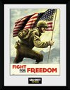 PFC2632-CALL-OF-DUTY-wwii-fight-for-freedom.jpg