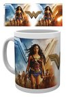 MG2719-WONDER-WOMAN-group-MOCKUP.jpg