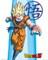 MP2143-DRAGON-BALL-Z-ss-goku.jpg