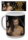 MG3438-WWE-adam-cole-MOCKUP.jpg