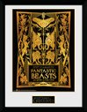 PFC3229-FANTASTIC-BEASTS-2-book-cover.jpg