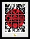PFC3390-DAVID-BOWIE-live-in-japan.jpg