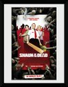 PFC3438-SHAUN-OF-THE-DEAD-key-art.jpg