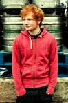 Ed Sheeran Pin Up