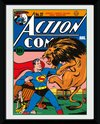 Superman Lion