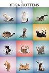Yoga - Kittens Grid