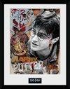 Harry Potter - Harry
