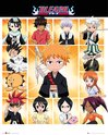 MP1899 Bleach Chibi Characters
