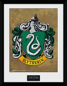Pfc2226-harry-potter-slytherin