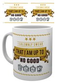 Mg1833-harry-potter-i-solemnly-swear-mockup