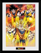 Pfc2372-dragon-ball-z-3-gokus