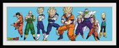 Pfd277-dragon-ball-z-heroes