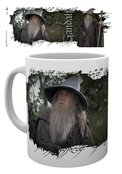 Mg2353-lord-of-the-rings-gandalf-mockup
