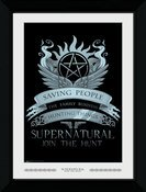 Pfp013-supernatural-wings