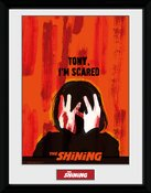 Pfc2829-the-shining-scared
